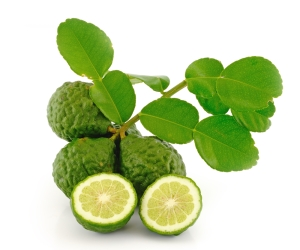 The kaffir lime leaves are also popular in Indonesian, Thai (for dishes such as tom yum), Cambodian, Burmese, Laos, and Malay cuisines.