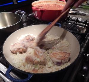 chicken.onion.skillet