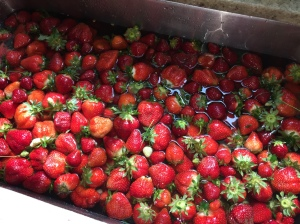 strawberries.in.sink