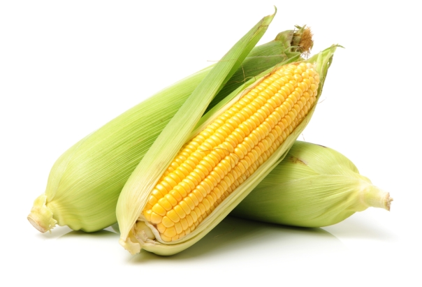 fresh.corn.cobbs
